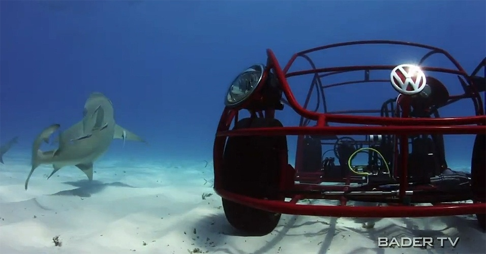 "'Beetle submarino' do Discovery Channel para a ""Semana do Tubarão 2012"""