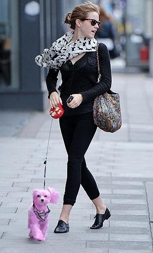 Após polêmica em torno de uma foto em que Emma Watson, 22, foi vista passeando por Londres, na Inglaterra, com a cadelinha Darcy completamente tingida de cor-de-rosa, a atriz esclareceu através de seu Twitter que o animal faz parte de uma campanha contra o câncer de mama.
