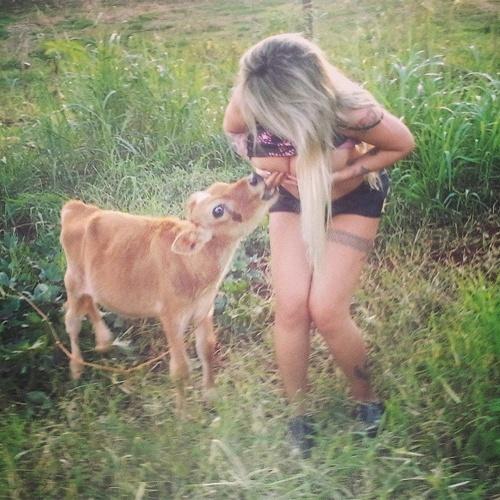 """25.mar.2013 - Depois de enfeitar o mamilo para um avestruz, a modelo e DJ Sabrina Boing Boing divulgou imagens em que aparece cobrindo os seios, quase """"amamentando"""" um bezerro. """"Teste feito com mamiferos. Até agora todos querem mamar (risos)"""", escreveu a loira na web. Em fevereiro deste ano, Boing Boing fez um implante de 3 litros de silicone nos seios"""